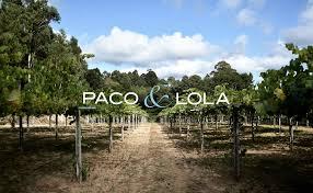 pacolola-spanielke-vino-albarino-biele-exklusivne-rias-baixas